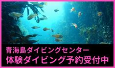 青海島ダイビングセンター体験ダイビング